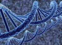 Ученые надеются вылечить ВИЧ, программируя гены