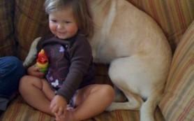 Собаки и кошки защищают детей от респираторных инфекций