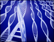 Обнаружен ген-выключатель иммунитета