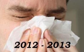 Грипп 2013: круговорот вирусов