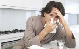 Лечение гриппа настоем почек сосны
