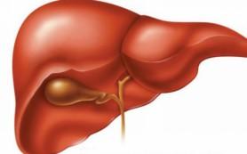 Алкогольный гепатит, часть 3