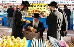 Два случая летального исхода от свиного гриппа в Израиле