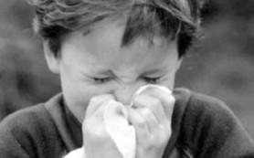 Во Львове — детская эпидемия гриппа