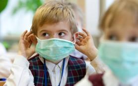 Более 10 тыс. человек госпитализировано в России из-за эпидемии гриппа и ОРВИ