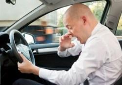 Почему простудные вирусы «дурманят мозг» водителя сильнее алкоголя