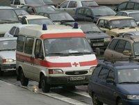Карантин по бешенству объявлен в одном из поселений Новой Москвы