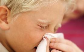 Высокая влажность поможет бороться с гриппом, — ученые