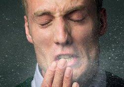 Ученые выяснили: как не заразиться гриппом в офисе