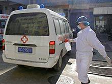 Эпидемиологи: новый китайский штамм гриппа стремительно мутирует