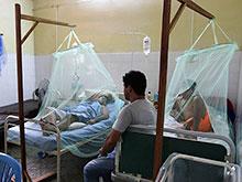 Лихорадка Денге захватила Соломоновы острова