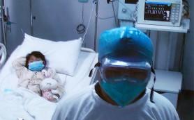 Власти Японии начали готовиться к возможному приходу птичьего гриппа