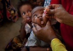 Полиомиелит не сдается: зарегистрированы новые случаи заболевания