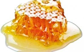 Какие опасные инфекции убивает мед?