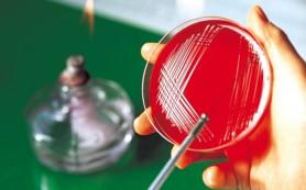 За пять лет в Пензенской области от пневмококковой инфекции привито более 5 тыс. детей