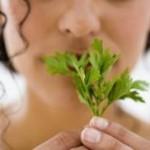 3 растения, которые помогут при кожных инфекциях