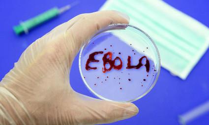 Япония готова предоставить ВОЗ препарат для лечения лихорадки Эбола