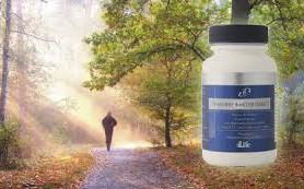 Сильнейший результат в восстановлении иммунитета от компании — «4life Research LTD», витамины now