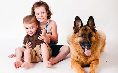 Можно ли заразиться от домашних животных?