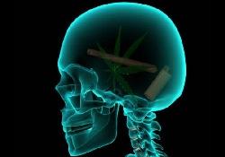 Отказ от курения позволяет мозгу «залечить раны» от табачного дыма