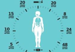 Составлен график положительных изменений в организме бывшего курильщика