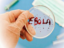В Казахстан прибыл россиянин с подозрением на Эболу