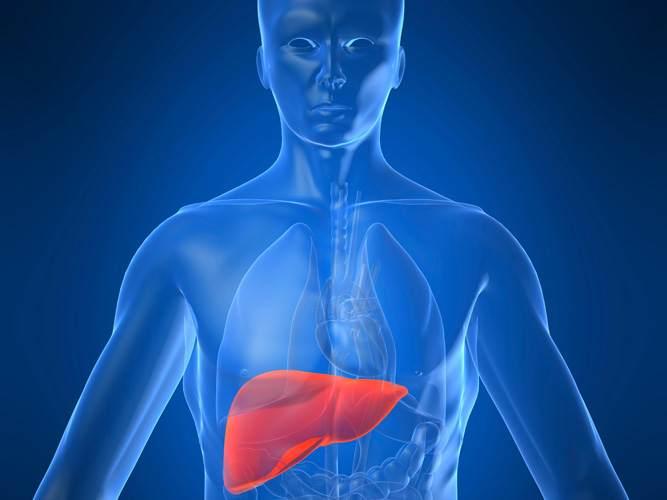 Гепатит С: кто в группе риска