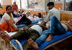 В столице Индии крупнейшая вспышка лихорадки денге