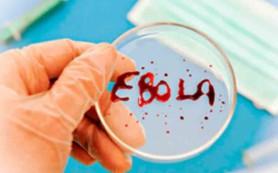 Либерия повторно объявлена свободной от лихорадки Эбола