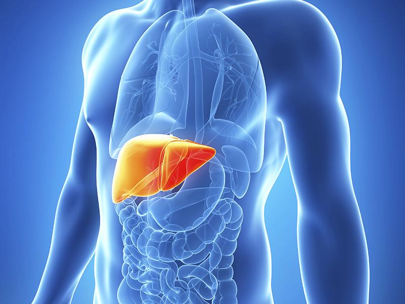 Новые горизонты в лечении хронического гепатита С