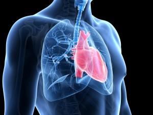 В США зарегистрирован новый препарат для терапии легочной артериальной гипертензии