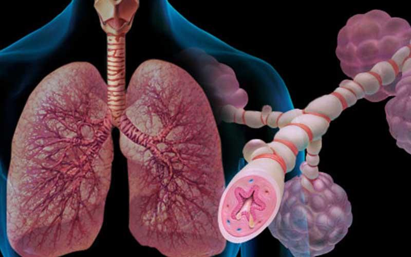 Низкий уровень витамина D в организме способствует развитию астмы
