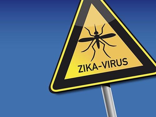 Российские эпидемиологи напоминают туристам об опасности инфицирования вирусом Зика