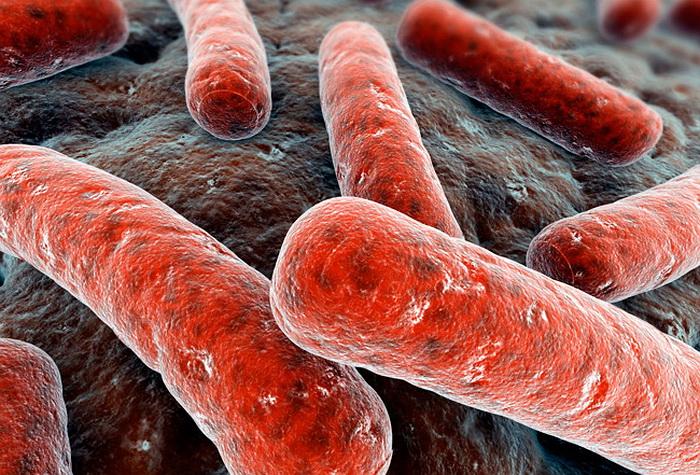 За год заболеваемость туберкулезом в РФ сократилась на 3%