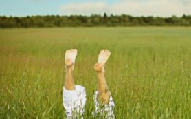 4 главных мифа об укусах клещей