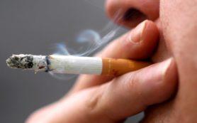 Учеными опубликована информация о никотине и курении