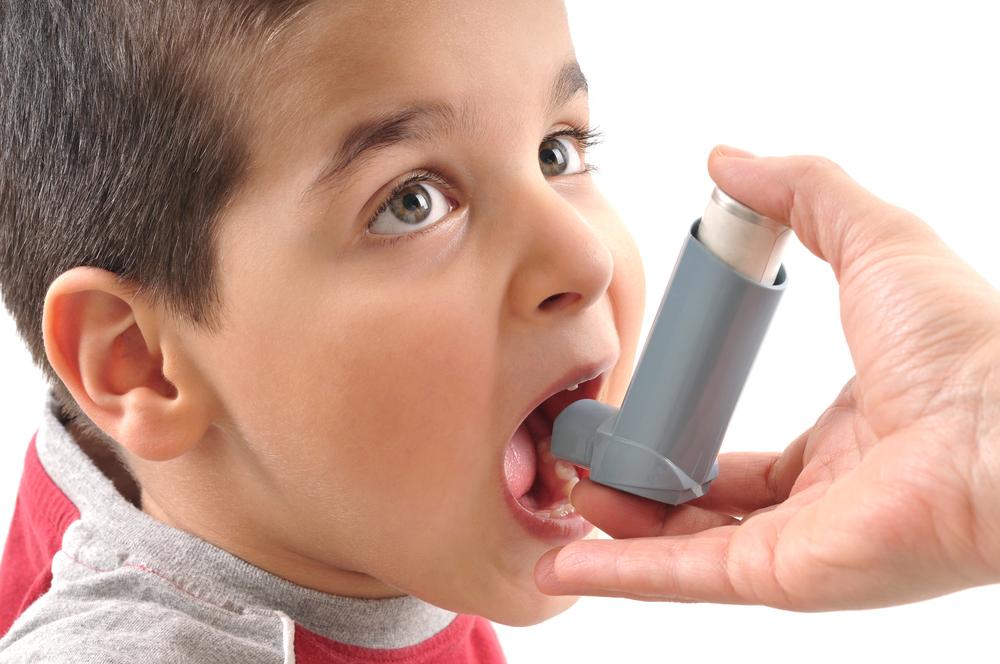 Домашние животные способны снизить риск развития астмы у ребенка – ученые