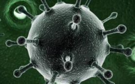 Заболеваемость гепатитом А в Самарской области снизилась вдвое