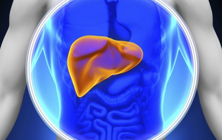 Ученые из США разработали новый препарат от гепатита С