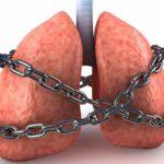 Стволовые клетки облегчают бронхиальную астму
