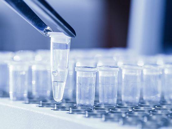 Особенности развития и течения гепатита, профилактика