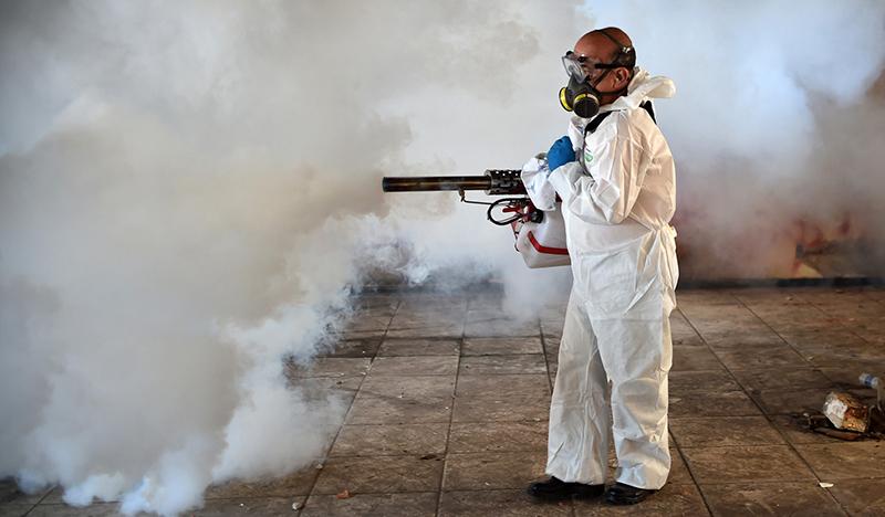 Вирус Зика перестанет быть опасным в ближайшие годы