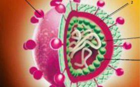 Гепатит стал опаснее СПИДа