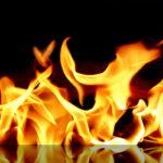 Ученые связали распространение туберкулеза с использованием огня человеком