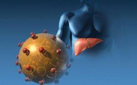 Ученые выяснили, когда исчезнет гепатит С
