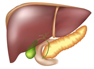 В Челябинской области хроническим гепатитом С болеют свыше 20 тыс. человек