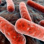 В Сибири разрабатывается наноаэрозоль против туберкулеза