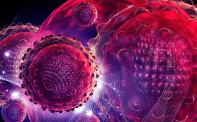 Разрабатывают более эффективную схему лечения гепатита С