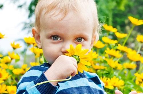 Выявляем аллергию у ребенка самостоятельно