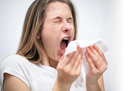 4 правила, которые помогут уменьшить количество пыли в квартире